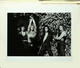 Van Halen 1979 Original Helmut Newton 16 x 20 Outtake Photo (4)